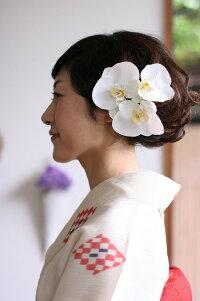 胡蝶蘭髪飾り【白】【ミニサイズ】【ケース付】【一本単位】【花嫁さんの花飾り・白無垢やウェディングドレスと合わせてもらいたい上品な胡蝶蘭のヘッドドレス】