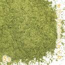 オリーブグリーンマイカ5g【手作り石けん/手作りコスメ/色付け/カラーラント/マイカ】【ポストお届け可/1】