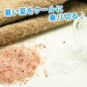 Menthol salt2