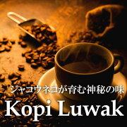 【送料無料】コピルアク中深煎100gジャコウネコが育んだ神秘のコピルアックコーヒー珈琲豆コーヒー豆KopiLuwak