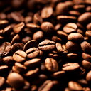 【マラゴジッペ】【バッハ コーヒー グループ】とても飲みやすいコーヒー。女性の方におすすめ!!!