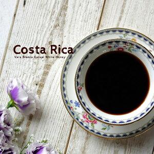 多くのバイヤーが魅了され信頼を寄せる家族経営ミルのクリーンで繊細なコーヒー コスタリカ バラブランカ カトゥアイ ホワイトハニー 200g