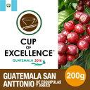カップ・オブ・エクセレンス2016受賞ロットグアテマラ サンアントニオ デ エスキプラス 200g