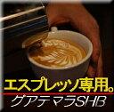 ■送料無料■【エスプレッソ用】グァテマラ・SHB 生豆時450g (焙煎後360g前後)