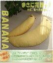 セット購入で割安っ! 抱き枕 バナナ♪ 大・小の親子セット販売! ワンポイントプリントで本物そっくり! 発送日当…
