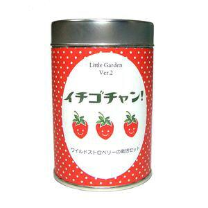 【ポイントUp4.5倍】リトルガーデンVer.2 イチゴチャン 栽培キット 栽培セット【代引不可】[02]