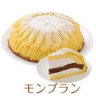 (半額/楽天スーパーセール)誕生日ケーキバースデーケーキモンブランケーキ7号21.0cm約990g送料無料(※一部地域除く)