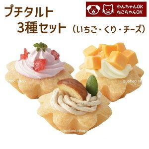 プチタルトケーキセット (苺、栗、チーズ) 誕生日ケーキ バースデーケーキ 犬用 ワンちゃん用 ペットケーキ ペット用ケーキ (ペットライブラリー or partnerfoods)