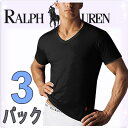 POLO RALPH LAUREN ポロ ラルフローレン tシャツ メンズ Vネック 3枚セット ラルフローレンTシャツ ラルフtシャツ[LCVN]