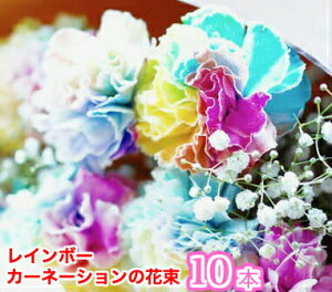 母の日 レインボーカーネーションの花束 10本 楽ギフ_包装 フラワーギフト ギフト 贈り物 プレゼント お祝い【rainbow10】