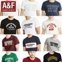 【アバクロ】【メール便送料無料】アバクロ Tシャツ 正規 メンズ Abercrombie & Fitch 123-238 アバクロンビー アン…