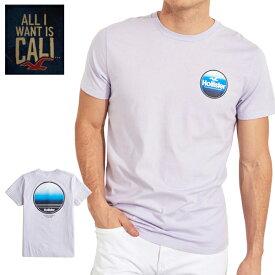 HOLISTERホリスター正規品メンズ半袖 Tシャツ ロゴプリントGuys Logo Graphic Teeラベンダー323-243-2520-620海外インポートブランド海外買い付け正規【楽ギフ_包装】[0919]