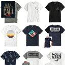 【メール便送料無料】【ホリスター】メンズ Tシャツ 正規 Hollisterメンズ 正規品 半袖 12種類 San Pedro Bayプリン…
