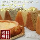 【シフォンケーキ】幸せのチーズケーキ&5シフォンケーキ(生クリームサンド)【本州、四国、九州は送料無料】【1日10セット限定】【ギフト】【母の日】【内祝い】【10P02Mar14】