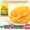 【送料無料】カンボジア産ドライマンゴー 300g(100g×3袋) 1000円ぽっきり ドライフルーツ マンゴー ヨーグルト小分け…