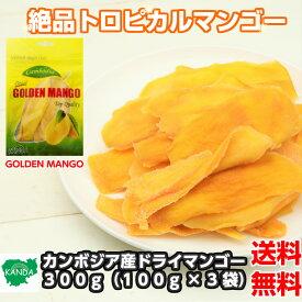 【送料無料】カンボジア産ドライマンゴー 300g(100g×3袋) 1000円ぽっきり ドライフルーツ マンゴー ヨーグルト小分け おすすめ おかえりマンゴー シリアル トッピング カンボジア ビタミン 健康 半生 訳あり ではありません
