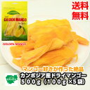 カンボジア産ドライマンゴー 500g(100g×5袋) 送料無料 マンゴー 小分け おすすめ マンゴー ヨーグルト