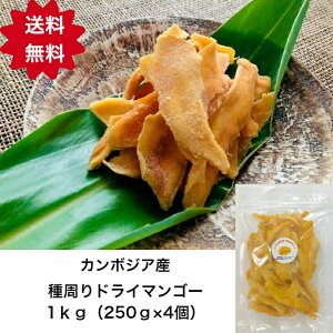 【送料無料】カンボジア産 種周り 訳あり ドライマンゴー 不揃い 半生 1kg (250g×4個)