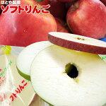 【ソフトりんご2枚×3】[※SP][※常温便][※当店他商品との同梱可]