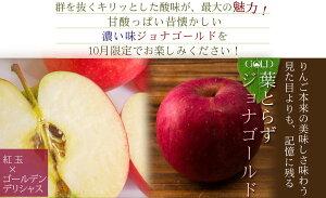 青森葉とらずりんごジョナゴールド【葉とらずジョナ5kgファーム】送料無料通好みのジョナゴールドです!多少の傷有でも、味は贈答用と同じ☆リンゴジョナゴールド♪[※産地直送のため同梱不可]