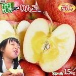 青森りんご葉とらずふじ家庭用15kg