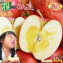 りんご の常識を変える★葉とらず栽培 本場青森ゴールド農園 送料無料 【葉とらずりんご ふじ10kg プレミアム】贈答用…