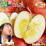 青森りんご葉とらずふじ贈答用3kg