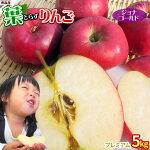 青森りんご葉とらずジョナゴールド贈答用5kg
