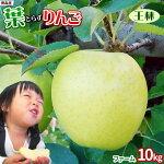 【葉とらず王林10kgファーム】《送料無料!!》青森りんご「葉とらず」栽培だから本当に美味しい!青いのに甘い品種、たっぷりどうぞ★