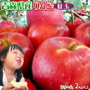 りんご 【青森県産りんご 紅玉 ファーム2kg以上】7-10玉 家庭用 送料無料 ゴールド農園 りんご リンゴ 訳アリ アップ…