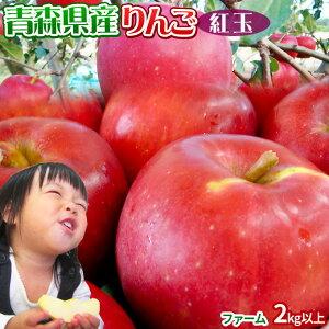 りんご 【青森県産りんご 紅玉 ファーム2kg以上】7-10玉 家庭用 送料無料 ゴールド農園 りんご リンゴ 訳アリ アップルパイ[※産地直送のため同梱不可]