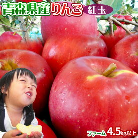 りんご 【青森県産りんご 紅玉 ファーム4.5kg以上】13-28玉 家庭用 送料無料 ゴールド農園 りんご リンゴ 訳アリ アップルパイ[※常温便][※産地直送のため同梱不可]