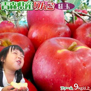 りんご 【青森県産りんご 紅玉 ファーム9kg以上】26-56玉 家庭用 送料無料 ゴールド農園 りんご リンゴ 訳アリ アップルパイ[※産地直送のため同梱不可]