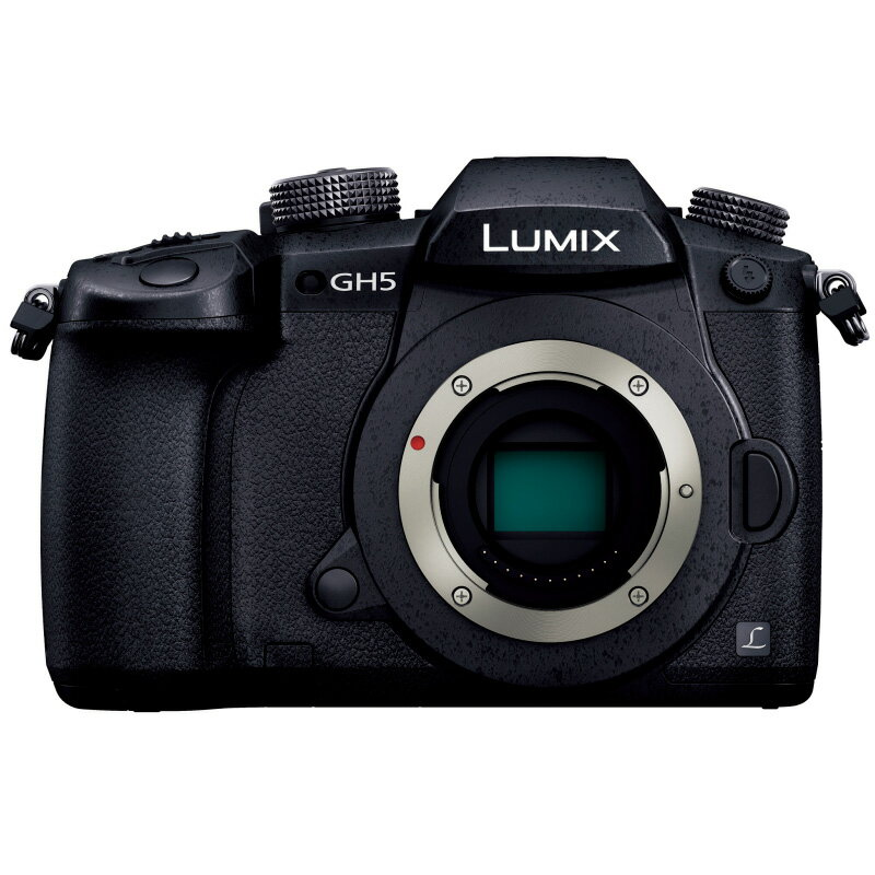 Panasonic パナソニック LUMIX GH5 ボディ(DC-GH5-K)ミラーレス一眼カメラ