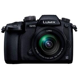 【11月25日10:00-11月27日23:59 300円OFFクーポン発行中!】Panasonic パナソニック LUMIX GH5 標準ズームレンズキット (DC-GH5M-K)ミラーレス一眼カメラ