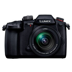 【8/1 0:00-23:59 最大6,000円OFFクーポン&エントリー・リピート購入で最大2,400ポイント】Panasonic パナソニック LUMIX GH5 II 標準ズームレンズキット (DC-GH5M2M) ミラーレス一眼カメラ