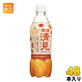 えひめ飲料 POM 愛媛清見サイダー 410ml ペットボトル 48本 (24本入×2 まとめ買い)