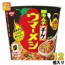 日清食品 日清ウマーメシ 豚キムチチゲ 100g 12個 (6個入×2 まとめ買い)
