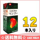 ジューシー トロピカルマンゴー 1000ml紙パック 6本入×2 まとめ買い〔 どりんくマンゴージュース まんごージュース〕