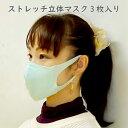 【即納】洗える 立体マスク 大人用 3枚セット ストレッチ よく伸びる 痛くない ハンドメイド
