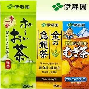 金の烏龍茶(紙パック) 250ml ×24本