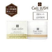 セルラッシュオールインワンゲル100g2個セット(送料無料)CeLLLUSHクリームエイジングケア