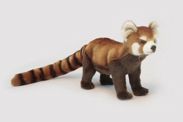 HANSA(ハンサ) レッドパンダ >> ぬいぐるみ ヌイグルミ 動物 アニマル リアル 本物そっくり インテリア フィギュア 【メーカー直送品】 メーカー直送の為、代金引換・他商品との同梱はできません。