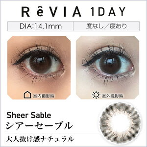 ReVIA1day/COLOR10枚入りレヴィアワンデー