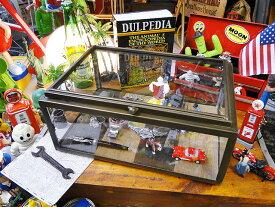 こういうコレクションケースにずっと憧れてた! ダルトン ガラスコレクションボックス ウッドベース ■ アメリカ雑貨 アメリカン雑貨