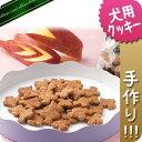 【無添加手作り】国産アカシア蜂蜜入りりんごクッキー 50g【犬用おやつ】【犬用クッキー】【無添加クッキー】【りんご】