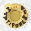 【愛犬用ケーキ】チキンミートローフケーキM犬用ケーキ/犬 ケーキ/犬 誕生日 ケーキ/犬 バースデイケーキ/ドッグフー…
