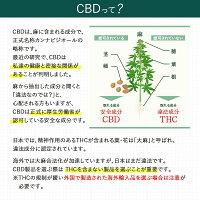 【スーパーSALE半額】CBDオイルCannaTechCBDDROPSフレーバー10mlCBD600mg国産国内製造THCフリーチンキチンキチャ—cbdoilヘンプカンナビジオールカンナビノイド