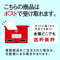 送料無料ポスト投函