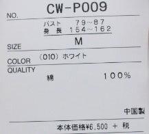 ●Champion【チャンピオン】ルーネックスウェットシャツカレッジプリントトレーナーCW-P009